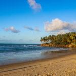 Praia da Taíba, mar, areia e coqueirais