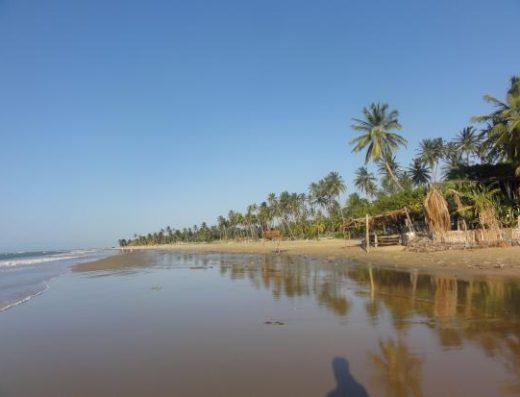 Praia Icaraí de Amontada e seus coqueirais